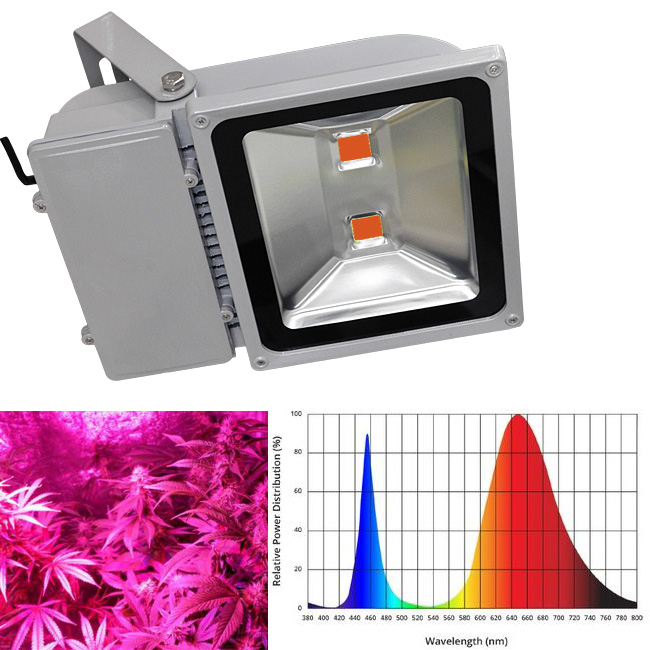 Pantalla LED Grow Full Spectrum 100W Cultivo Plantas -PROMOCION-